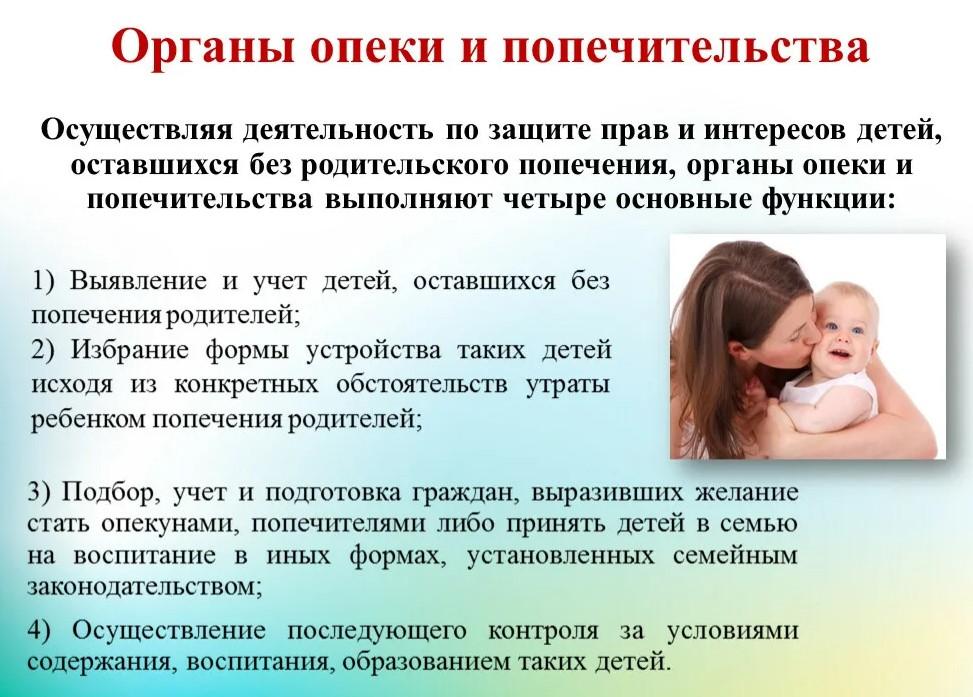 На фото написаны права и обязанности органов опеки и попечительства по защите прав детей.